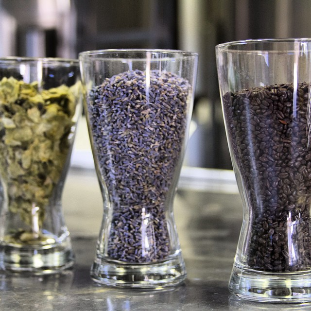 Whole leaf hops, lavender, and black malts are key ingredients in what Upland brew? #craftbeer #themoreyouknow